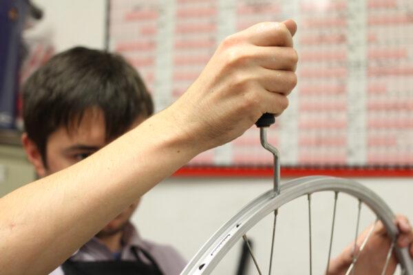 Building a wheel